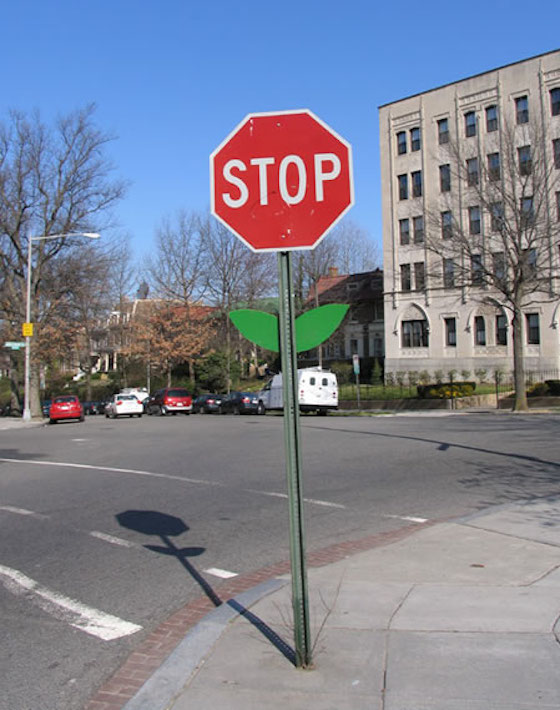 stop-sign-flower-mark-jenkins