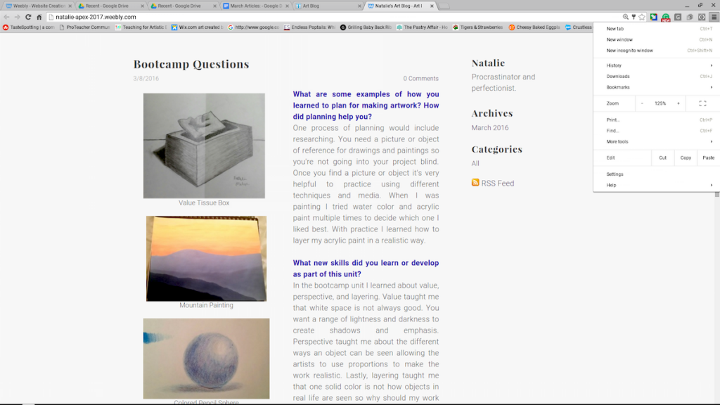screenshot of student blog